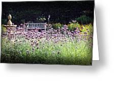 Summer Garden II Greeting Card