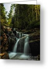 Summer Glow On The Falls Greeting Card