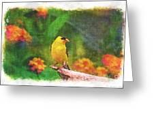 Summer Goldfinch - Digital Paint 4 Greeting Card