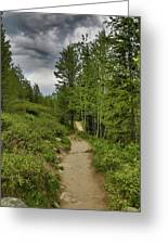 Summer Hike And Storm Clouds Greeting Card