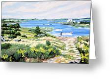 Summer In Lunenburg Harbour Greeting Card
