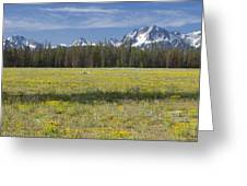 Summer In The Sawtooths Greeting Card