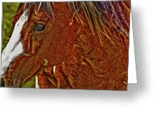 Summer Mare Greeting Card