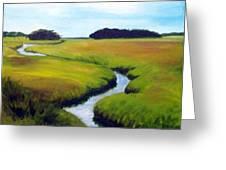 Summer Marsh Greeting Card