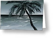 Summer Night In Florida Greeting Card