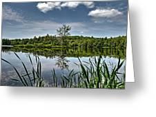 Summer On Waukeena Lake Greeting Card