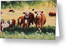 Summer Pastures Greeting Card