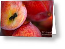 Summer Peaches Greeting Card