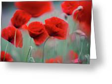 Summer Poppy Meadow 2 Greeting Card