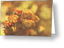 Summer Roses #1 Greeting Card by Pat Abbott