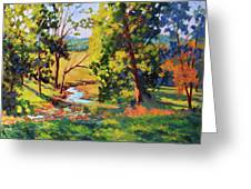 Summer Shadows Greeting Card