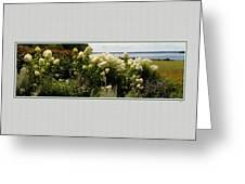 Summer Spledor Greeting Card