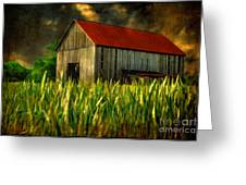 Summer Storm Greeting Card by Lois Bryan