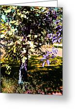 Summer Sulstice Greeting Card