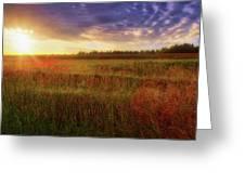 Summer Sunset - Waukesha Wisconsin  Greeting Card
