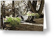 Summer Sweetness Greeting Card