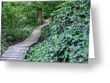 Summer Trail Path Greeting Card