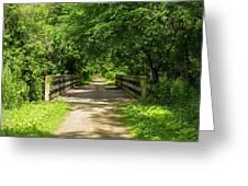 Summer Trail Scene 4 A Greeting Card