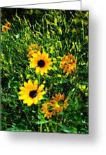 Summer Wildflower Dreams Greeting Card