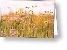 Summer Wildflower Field Of Sunflowers Greeting Card