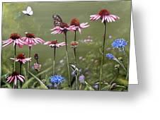 Summerlands Greeting Card