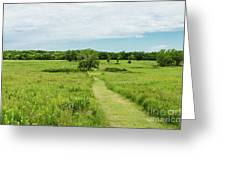 Summer's Day On The Prairie Greeting Card