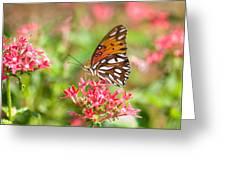 Summertime Greeting Card