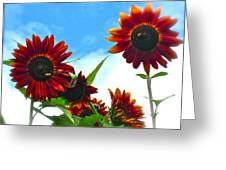Summertime Memories Greeting Card