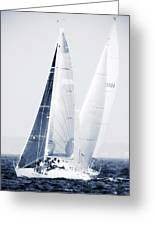 Summertime Race 5 Greeting Card