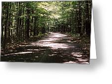 Sun And Shadow Road In Summer  C3pdl Greeting Card