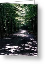 Sun And Shadow Road In Summer Imp Wc Greeting Card