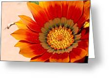 Sun Bloom Of Fire Greeting Card
