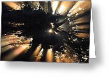 Sun Cast Greeting Card