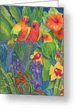 Sun Conure Parrots Greeting Card