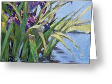 Sun Day - Iris In A Pond Greeting Card