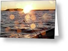 Sun Drops  Greeting Card