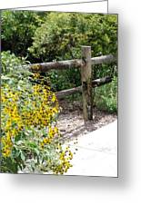 Sun Flower Fence Greeting Card