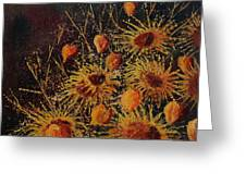 Sun Flowers And Physialis  Greeting Card