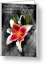 Sun Gazer Lily Poster Greeting Card