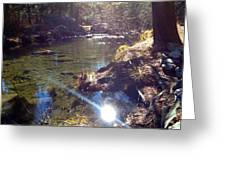 Sun Glare Off River Greeting Card