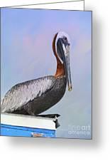 Sun Glow Pelican Greeting Card