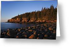 Sun Kissed Acadia Greeting Card
