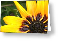 Sun Kist Greeting Card
