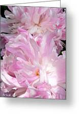 Sun Lit Peonies Greeting Card