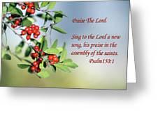 Sun Lite Pyrocanthia Berries Ps. 150 V 1 Greeting Card