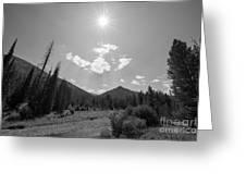 Sun Rays In Yellowstone Bw Greeting Card