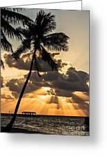 Sun Rays Over Islamorada Greeting Card