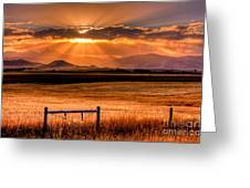 Sun Sets On Summer Greeting Card