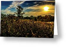 Sun Setting At Valley Forge Greeting Card