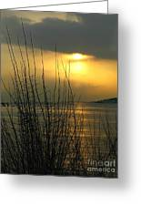 Sun Setting From Eastern Point Greeting Card
